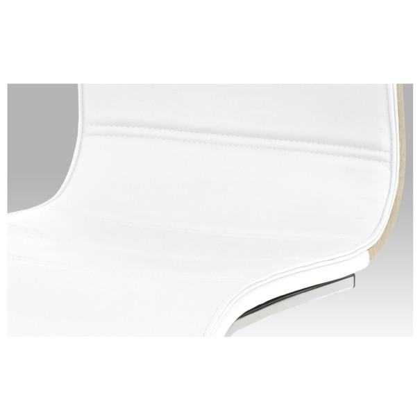 Jídelní židle RITA 2 bílá/chrom 5