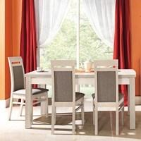Jídelní židle ALEX AX13 túje/šedá 2